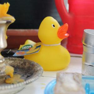 Quietsche-Ente im Badezimmer